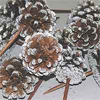 Pinecones Austriaca Frosted on Pick 100