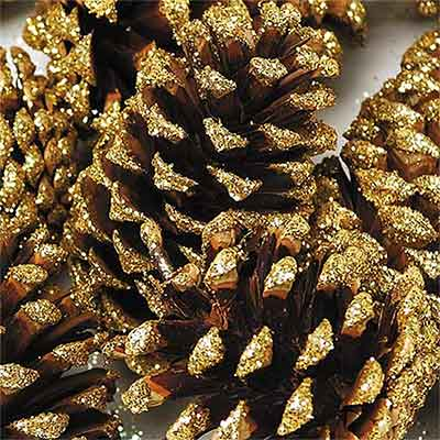 Pinecones Gold Sparkle Tipped 144 Cones