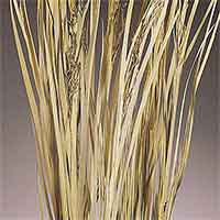 Wild Grass, Natural, 12 Bundles