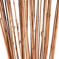 Bamboo Sticks 4 Feet Natural