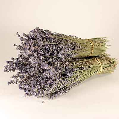 Dried Lavender, 30 Bundles
