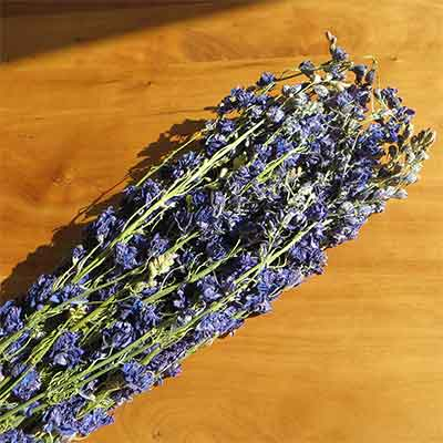 Dried Larkspur Flowers, Dark Blue