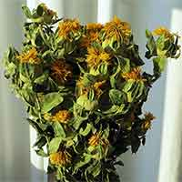 Dried Safflower, 20 Bunches, Yellow