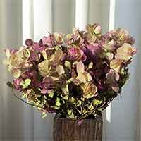 Oregano Flowers - Kent Beauty, 15 Bunches