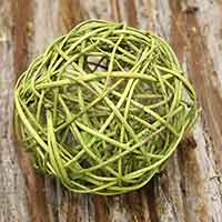 8 Basil Curly Willow Balls 6""