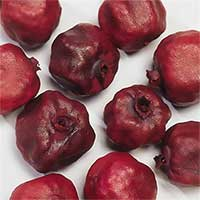 Decorative Dried Pomegranates Bulk for Sale