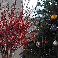 Winterberry Branches, 8 Bundles, 22-30""
