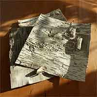 10 Birch Bark Sheets, 12x12