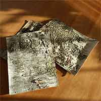 10 Birch Bark Sheets, 8x10