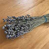 Dried Lavender Seconds, 32 Bundles