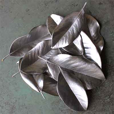 Nickel Magnolia Leaves