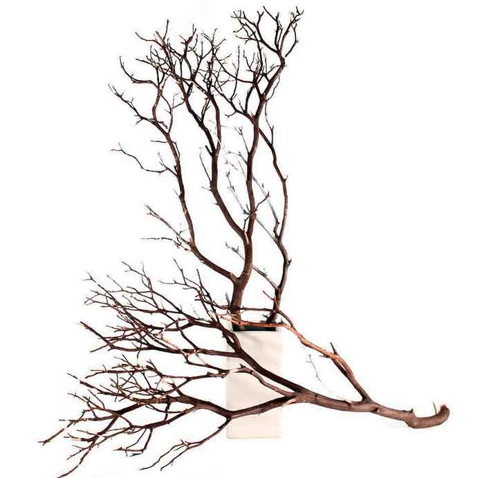 12 Natural Manzanita Branches 24 Quot