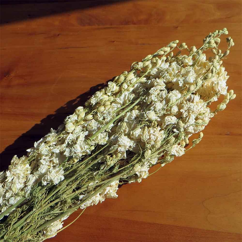 Dried Larkspur Flowers Dark Blue